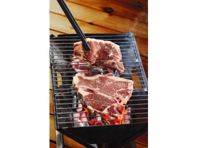 ディノスが、GWや夏に食べたい肉、ひんやりスイーツなどを新発売