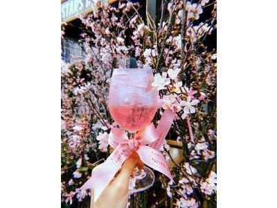 Intimissimi(インティミッシミ)京都のモダンイタリアンStars'n Cacioと桜のコラボレーション