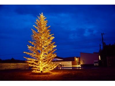 本日より開催!クリスマスイルミネーションナイト in THE CHIKURA UMI BASE CAMP。今冬、南房総に新たなデートスポットが誕生します