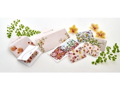 日比谷花壇×QUOカード「大切な方に贈る花束のようなギフト」をコンセプトにしたQUOカード・カードケース新発売!