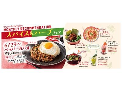 【唐辛子と黒胡椒 ダブルの辛さでスパイシー!】タイ料理「マンゴツリーカフェ」&「マンゴツリーキッチン」の「ペッパーガパオ」2021年6月29日(火)より期間限定販売スタート