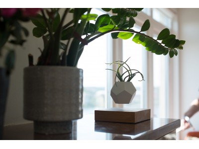 スウェーデンでデザインされた、空中浮遊する植物プラント「LYFE」を自社ECにて販売開始!