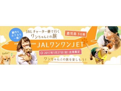 機内もホテルも一緒!JALチャーター便で行くワンちゃんとの旅『JALワンワンJET 鹿児島3日間』12月...