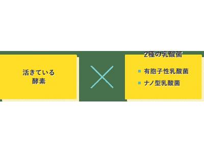活きている酵素サプリ!新谷酵素の『夜遅いごはんでも W菌活ボディメイク』が日本マーケティングリサーチ機構の調査で3部門No.1に選ばれました!