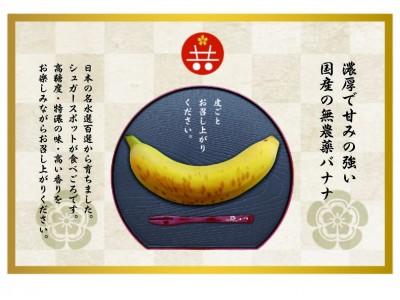 マイナス60℃で氷河期体験させ糖度の高いバナナに!皮ごと食べられる国産バナナが新たなブランドとして誕生『ともいきバナナ』販売開始