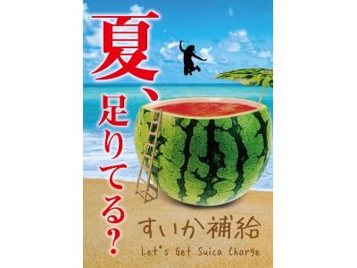 今年もすいかの季節がやってきた! 九州屋にすいかメニューが続々登場!すいかフェア「夏、足りてる?すいか補給」