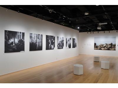 『第5回 epSITE Exhibition Award』に王 華写真展「Box of Dreams」を選出
