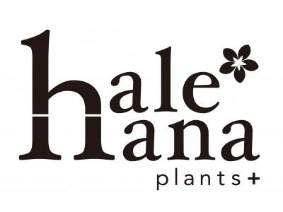 当社初の直営フラワーショップ「hale-hana plant (ハレハナ プランツプラス)」オープン!(西武緑化管理株式会社)