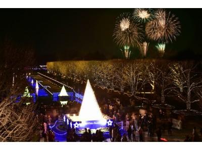 """1万5千個のシャンパングラスとカナールに映る""""光の黄葉""""「Winter Vista Illumination 2018」開催!(国営昭和記念公園)"""