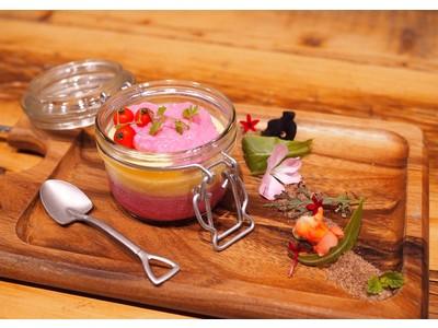 埼玉のおふろから乳がんの早期発見・治療を啓発推進。おふろcafe ハレニワの湯で「ピンクリボン風呂」を実施