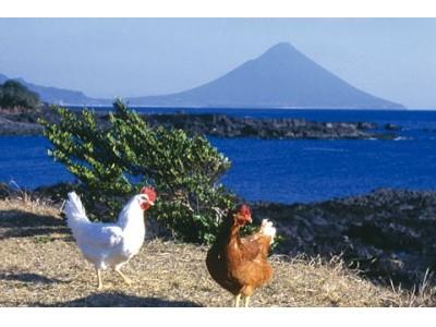 """山形初!鹿児島のさつま知覧どりを使用した""""串に刺さない焼き鳥店""""がオープン!『炭火焼 さつま知覧どり ひまり」が6月14日㈭に山形市七日町にオープンしました。"""