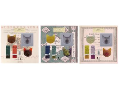 サスティナブルな手作り美容石鹸ブランド「9.kyuu」からX'mas限定品発売!人気の「ツカッテツクレルネコキット」から冬に嬉しい3種類のキットが新登場
