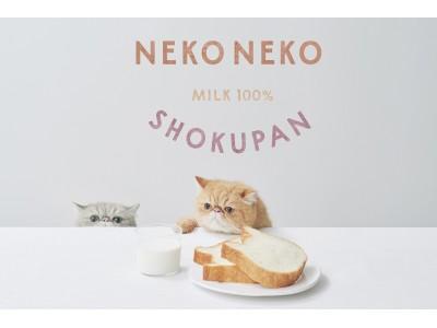 【手土産やプレゼントにも人気】ねこの形の高級食パン専門店「ねこねこ食パン」が東京・静岡に同時オープン!
