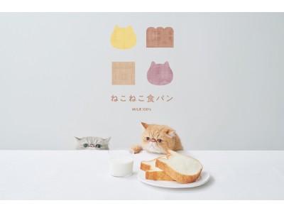 ねこの形の高級食パン専門店「ねこねこ食パン」が愛知県・豊田市に登場!