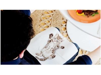 いつでも猫ちゃんと一緒にディナー!キレイに使いたくなる可愛い猫がプリントされたナプキン。