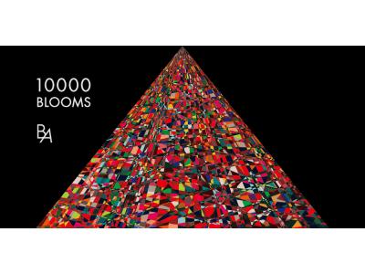 「B.A」ブランド体感イベント 「10000 BLOOMS」を開催【12月4日(火)~12月9日(日)@SO-CAL LINK GALLERY(東京・表参道)】