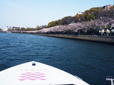 関西初の海の駅併設・水上レストラン「CORAL KITCHEN at sea」が提案する 水上から桜を楽しむ!よくばりクルージングプラン