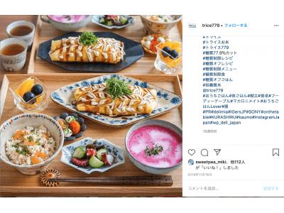 ごはんと比べて糖質77.9%オフを実現米粉由来の無添加食品「TRICE」(トライス)Instagramに免疫upレシピ投稿で10名様に「TRICE」7食分をプレゼント!
