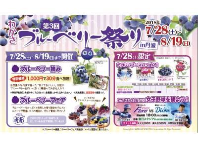 『第3回 わかさブルーベリー祭り in丹波』を開催します。