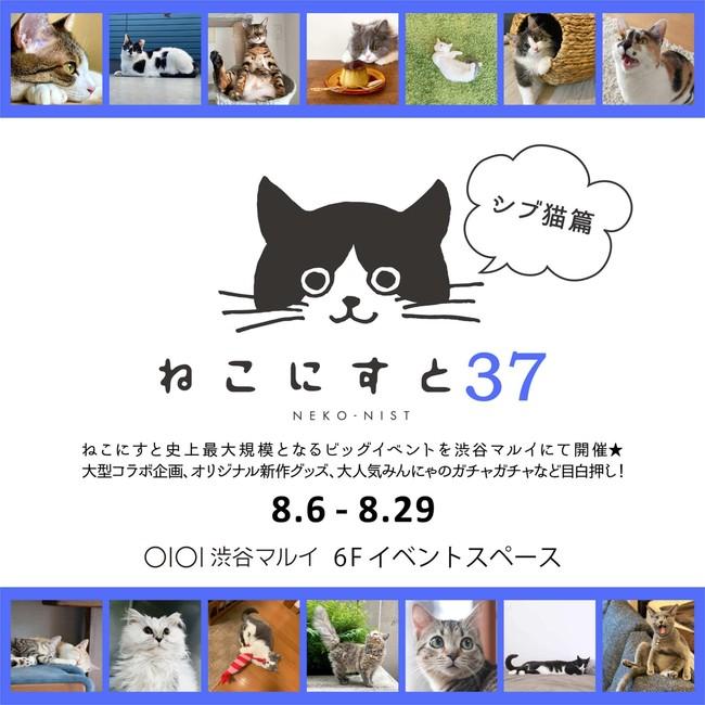 【日本最大級のねこ写真パネル&グッズ展「ねこにすと」】「ねこにすと37~シブ猫篇~」+いぬ写真パネル展「いぬにすと~シブ犬篇~」 渋谷マルイにて開催します!