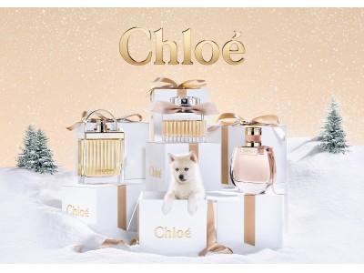 クロエの人気フレグランス「クロエ オードパルファム」と「クロエ ノマド」から、2つのクリスマスコフレが数量限定発売!