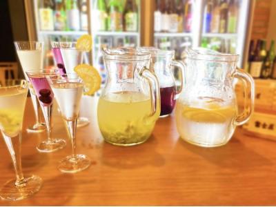 飲んでキレイに!1時間500円で80種以上の日本酒が飲み放題『日本酒バル 富士屋』の期間限定サングリアが美容にいい!日本酒女子は渋谷に集合!!