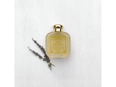 クリスマスまでに愛せる香水を探そう!860円~プロが試香スティックで香水診断。