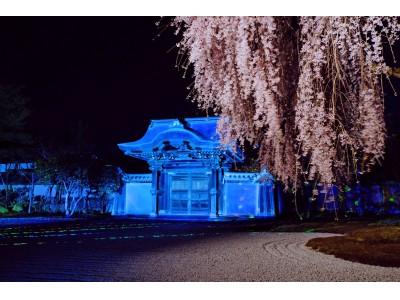 1日限定 桜満開の高台寺を貸切で堪能できる『SOWAKA限定 夜の高台寺「貸切」拝観付宿泊プラン』、1月17日(木)より予約受付開始