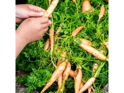 どうして、ふぞろいの野菜たちは、捨てられる?三浦半島・湘南からやってくる!見て、知って、触って。緑広がる一日限りのエシカルマルシェ 2021年3月21日(日)OPEN NAKAMEGUROにて開催
