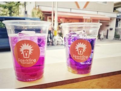 【スパークリング嵐山】話題の『色の変わるお茶』バタフライピー・ティーソーダの販売を開始します。
