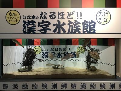 魚偏の漢字の由来とは…?「しな水のなるほど!!漢字水族館」開催