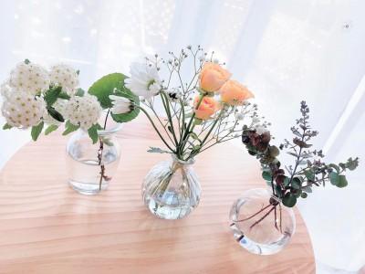 植物アプリGreenSnap×お花定期便サービスのmedelu(メデル)が、お子様のいるご家庭へお花プレゼントキャンペーンを実施!親子で花を楽しむ時間を提案