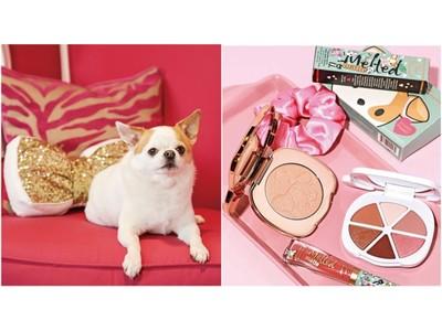 11月1日(日)犬の日はトゥー フェイスド人気の犬コスメでメイクを楽しんで。ブランド看板犬チワワ モチーフコスメオンライン限定キャンペーン開催!