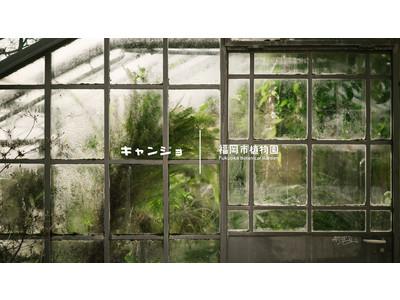 福岡市植物園と「キャンプ女子」がコラボ!植物園で「たき火」イベントを2/11(祝日)に開催します。