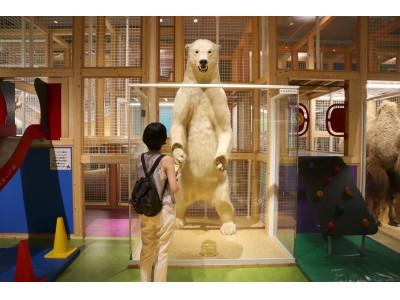 【国立科学博物館】プレミアムフライデー特別イベント「大人のコンパス」を11月29日(金)に開催いたします!