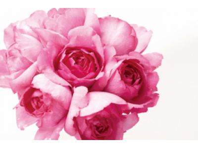 スキンケアブランド「I'm La Floria (アイム ラフロリア)」香りの満足度97%の『ルームフレグランス』を3月11日(水)新発売