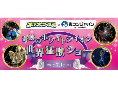 「奇跡のホワイトライオン世界猛獣ショー木下大サーカス×街コンジャパン」が開催決定!