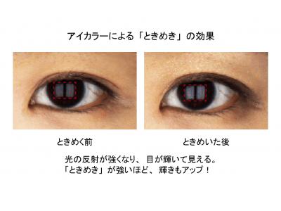 「ときめくと目が輝く」を実証!アイカラーがもたらす「ときめき」の秘密