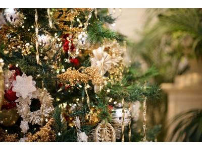 参加者全員でサンタコスを愉しむ!!『クリスマスツリー点灯イベント&聖歌隊クリスマスコンサート』開催! 点灯式を間近で見られるプレミアムシートやクリスマスブッフェも販売