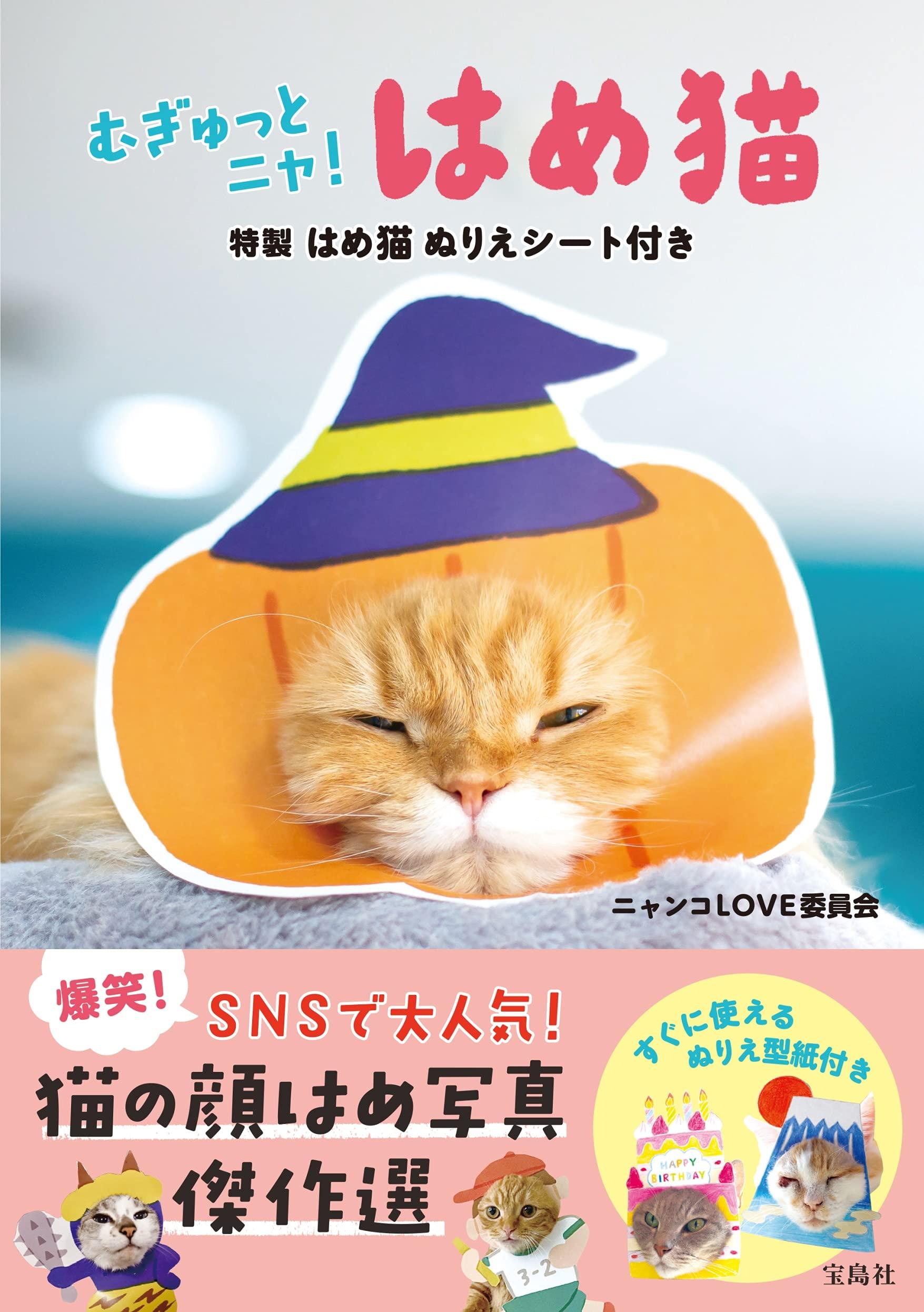 【新刊情報】猫が顔だし看板で大変身!「はめ猫」写真集が発売 画像