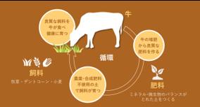 『HIS FOOD PROJECT』 北海道「美蘭牛・福姫」の流通を開拓