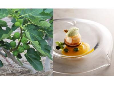 【京都ホテルオークラ】海・森・お茶で京の美食めぐり!今年で3年目の「京都フェア」