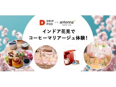 antenna* presents「インドア花見でコーヒーマリアージュ体験!supported by UCCドリップポッド」を開催します