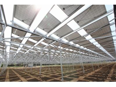 ソーラーシェアリング普及に向け、農業の自由度を高めた新製品開発