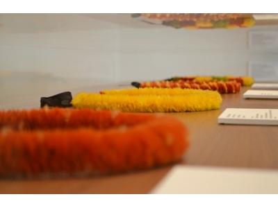 ハレクラニ ハワイアンの伝統アートを世界に伝える注目のアート展