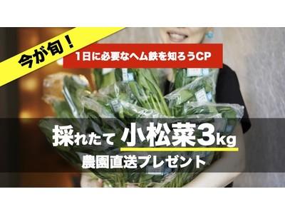 ★5月27日は『小松菜の日』★日本初の保険付きサプリメント*OR THIS ONEが「一日に必要なヘム鉄の量を知ろう」キャンペーン!小松菜3kgを無料プレゼント!