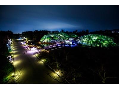 クリスマスシーズンの京都 穴場デートにおすすめ! 京都府立植物園 イルミネーシ…