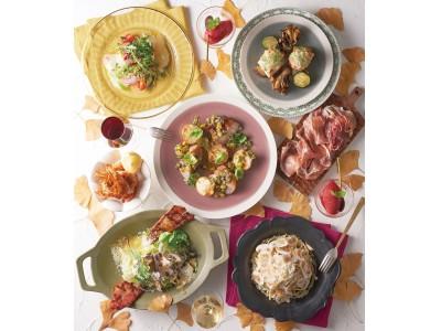 【KIHACHI】都内有数の紅葉スポット!黄金色に輝く146本のいちょう並木に面したテラス席で料理とワインを楽しむ「いちょう並木プラン」