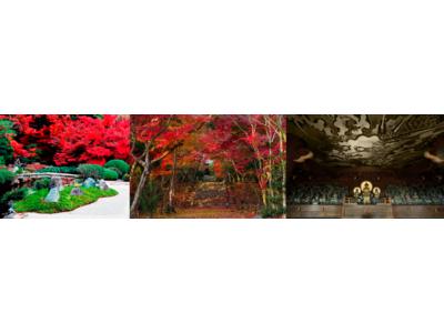 非公開の文化財や紅葉の映える庭園を期間限定で今年も公開! 2020年「京都 秋の特別公開」金戒光明寺・浄住寺を2020年11月より順次公開