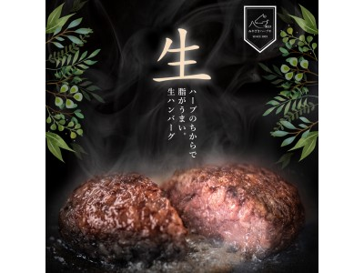 インスタグラム「手ごね生ハンバーグ」モニターキャンペーン